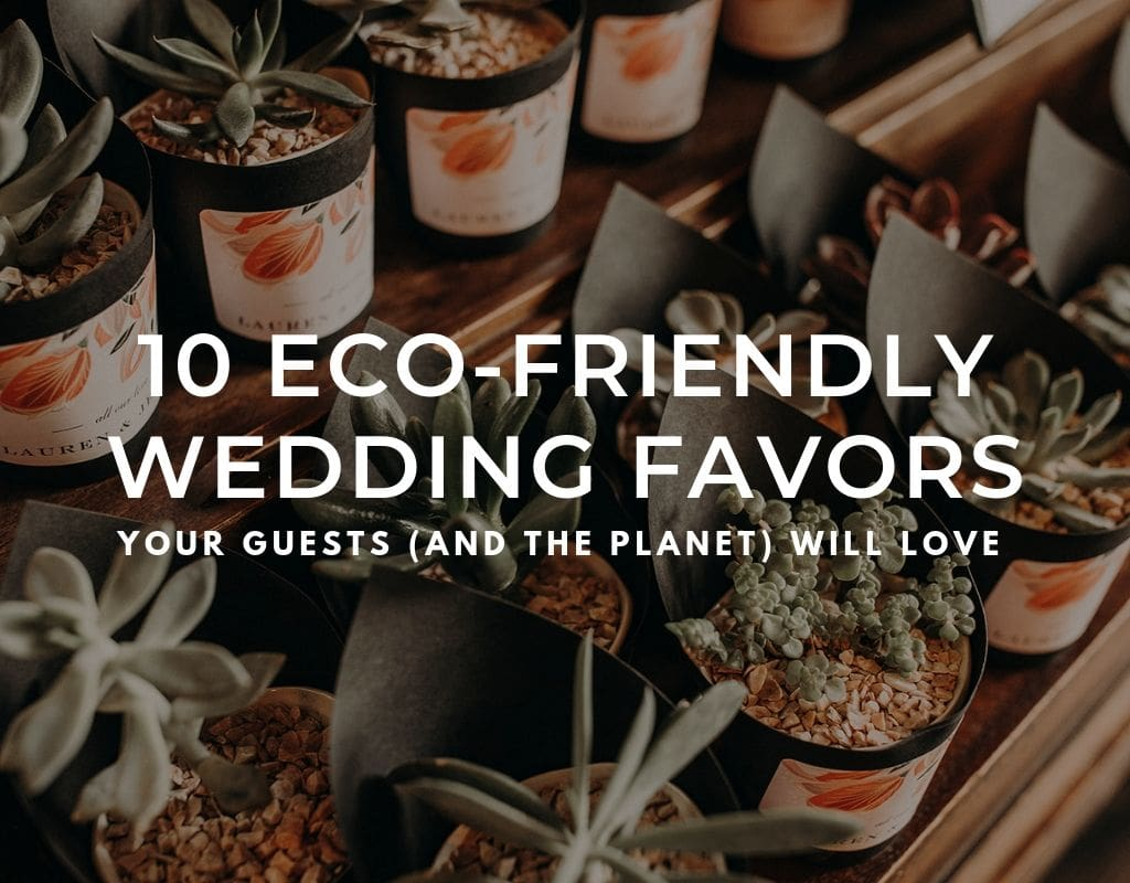 "Photo of succulent wedding favor with text that reads ""10 eco-friendly wedding favors that your guest (and the planet) will love"""