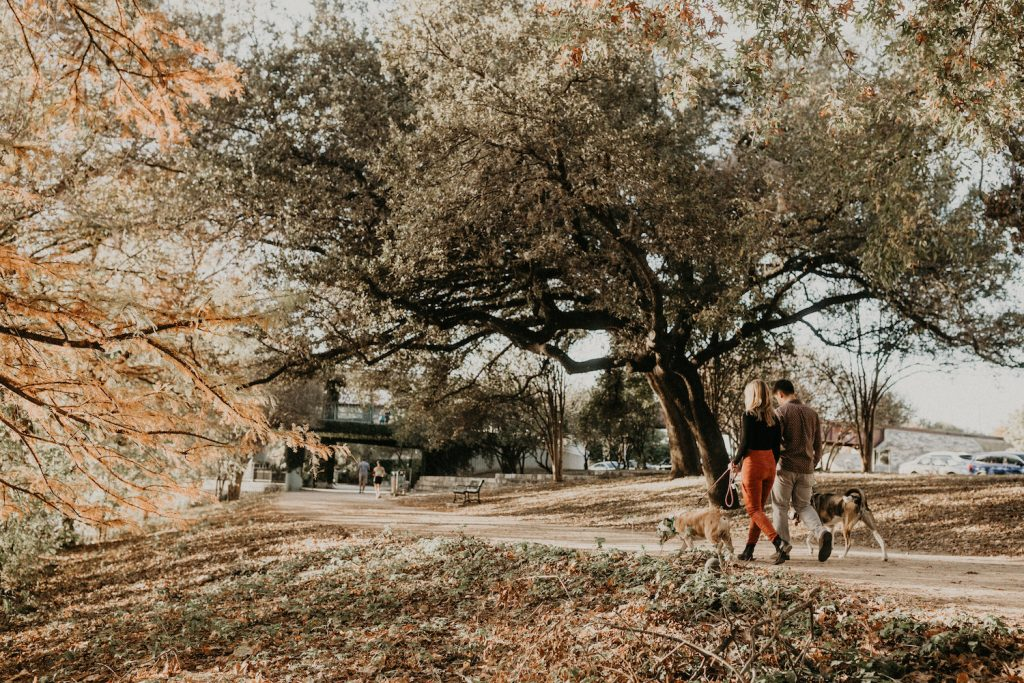 A couple walking their dogs along a park path during their engagement shoot by Austin, Texas wedding photographer Nikk Nguyen.